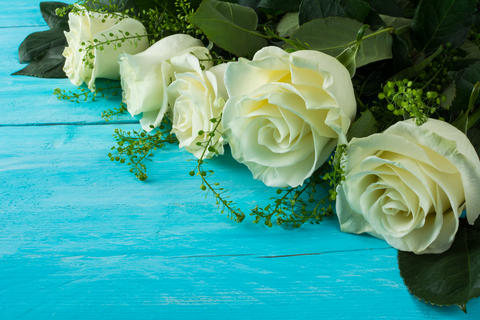 ivory roses on wooden turquoise background Foto