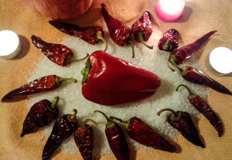 Composition of sweet and hot peppers Foto
