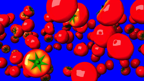 Tomatoes On Blue Chroma Key Animación
