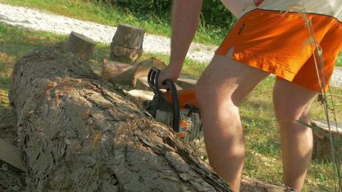 HD SLOW-MOTION: Lumberjack using chainsaw Footage
