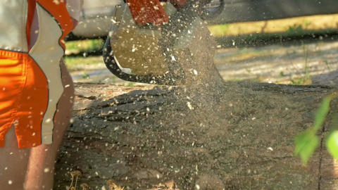 A man using a chainsaw to make firewood Footage