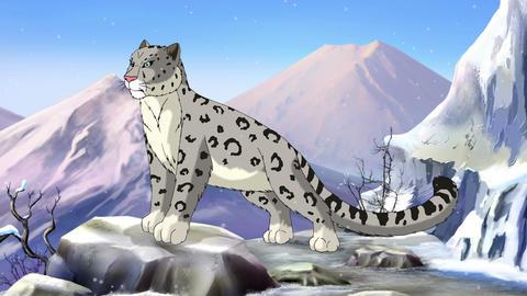 Snow Leopard Animation
