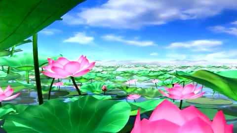 Peach blossom spring Lotus Animation