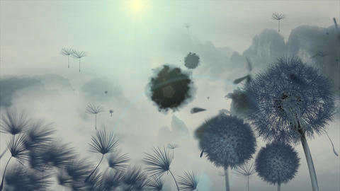 China dandelion wind video material ink Animation