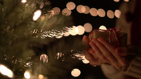 Woman holding Christmas gift box with Christmas tree on bokeh lights background Bild