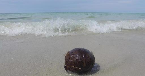 travel sea beach sand koh kood island Live Action