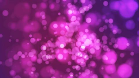 Broadcast Light Bokeh, Magenta Violet, Events, Loopable, 4K Animation