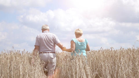 Video of senior couple walking in the wheat field in real slow motion ビデオ