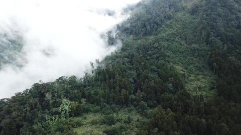 DJI MAVIC 4K Taiwan Chiyai Aerial Drone Bingzhena Erwanping Mountain 20171119 6 Footage