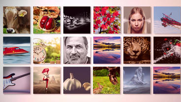 Elegant galery After Effects Templates