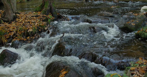Autumn river flow, timelapse, beautiful scenery Footage