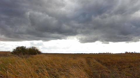Storm Cloudy sky over the field Footage