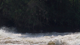 Raging River in Sudan Footage