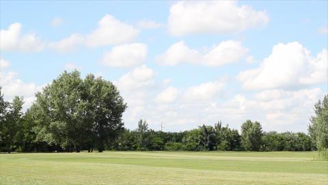 Golf Field Landscape stock footage