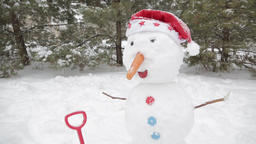 The cheerful snowman standing in the snow 6 ビデオ