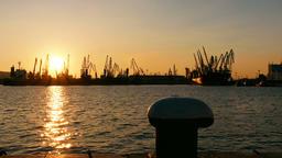 cargo port cranes silhouette on sunset Footage