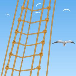 Seagulls and rope on blue sky Vector ベクター