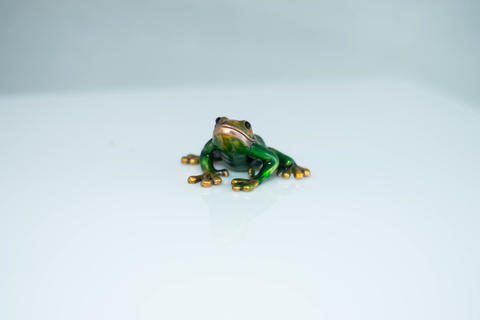 FROG figurine on white background Fotografía