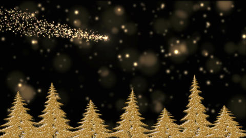 Golden Christmas trees in the holly night, golden lights, star falling Animation