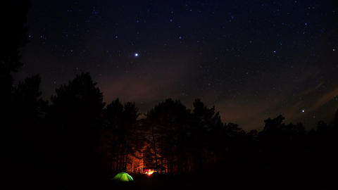 Tourist camp in the forest under a starry sky.Timelapse Footage