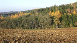 Plowed fields surrounded by forests. Autumn landscape - plowed field and forest Live Action