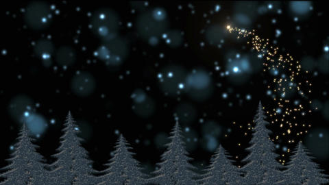 Snow and frost covered Christmas trees in the holly night, magical lights, star Animation