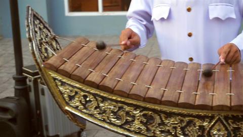 Musician playing the wooden thai gamelan Footage