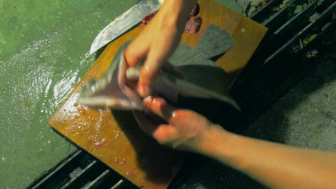 cleaning and preparing Brill Turbot flatfish for grilling. removing fish offal Footage