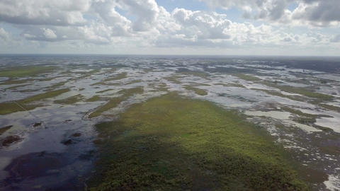 Aerial Over Head Shot Of The Florida Everglades 2 Footage