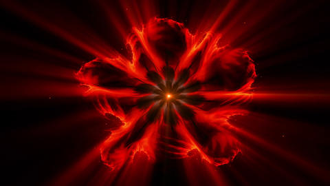 Burning red fiery flower with rays of light Animation