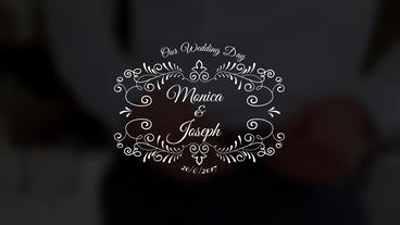Wedding Title Premiere Pro Template
