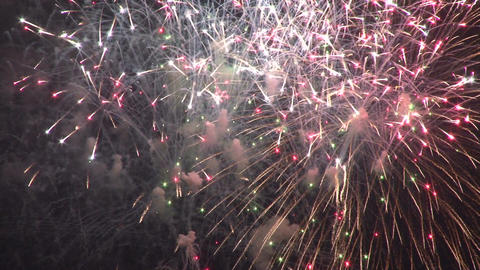 Multicolored fireworks exploding Live Action