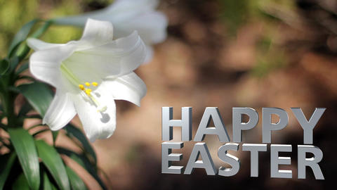 Easter lilies in breeze happy easter text Footage