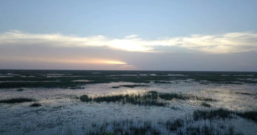 Everglades Fly Forward With No End In Sight Footage