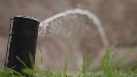 Lawn irrigation system that stops gradually after the watering period has Live Action