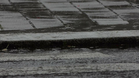 A water puddle on an asphalt pavement in a rainy weather in slow motion Footage