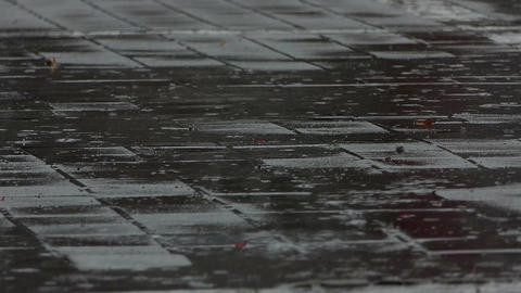 A pavement covered with square tiles in a rainy weather Footage