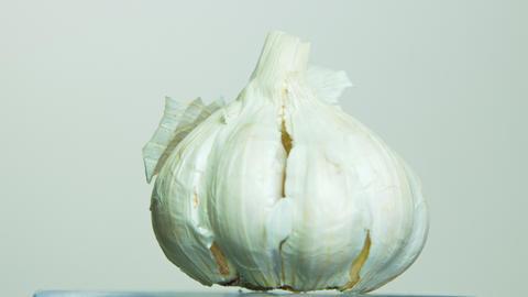Garlic rotating on isolated background Footage