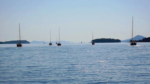 CROATIA, ADRIATIC SEA, 2017.11.07: Multiple sailing boats looking for anchorage Footage