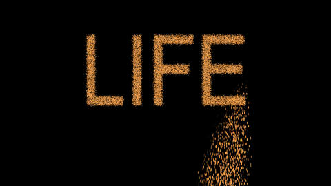 text LIFE appears from the sand, then crumbles. Alpha channel Premultiplied - Animation