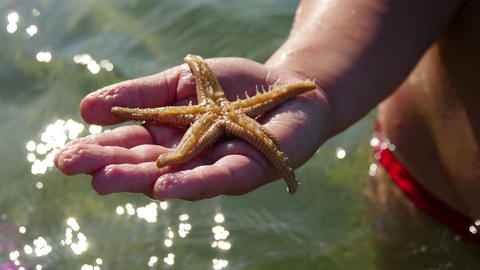 Young girl standing in sea and presenting sea star she found on sea floor Footage
