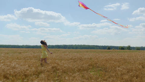 Cheerful woman runs with a kite on wheetfield at sunny day Image