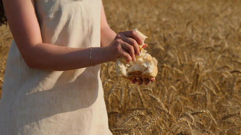Close up of woman's hands breaking loaf of bread at wheatfield ビデオ
