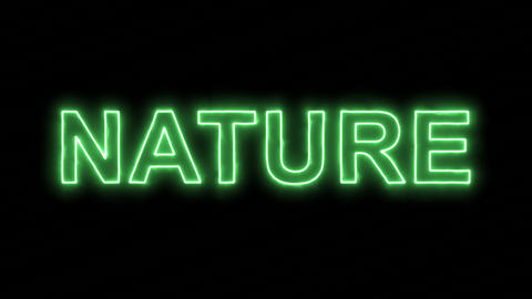 Neon flickering green text NATURE in the haze. Alpha channel Premultiplied - Animation
