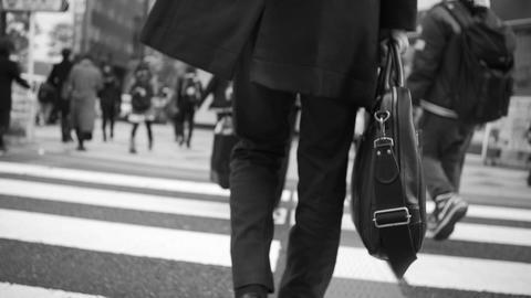 intersection、walking、traffic jam、Office ライブ動画