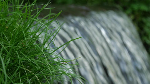Flowing water splash on waterfall with green grass slow motion and close up Footage