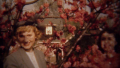 1948: Women wave red flowering tree blossoms sunshine happiness Footage