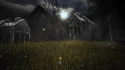 Grass at night 画像