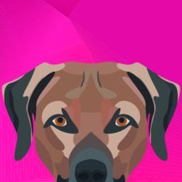 Illustration Dog Labrador looking over wall Vector
