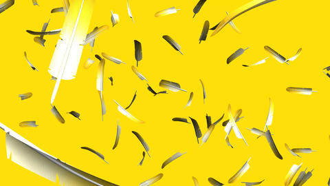 Yellow Feathers On Yellow Background Animation